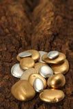Созерцание камушка золота наваристости Стоковые Фото