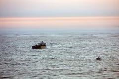 наведите море san строба francisco золотистое для того чтобы осмотреть Стоковые Фото