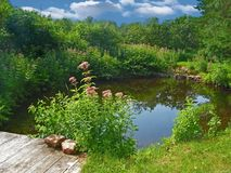 наведите пруд Стоковые Фото