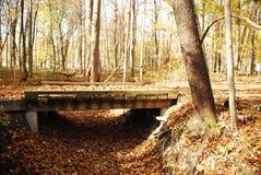 наведите деревянное Стоковое Фото