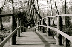 наведите деревянное Стоковые Изображения RF