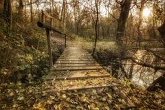 наведите деревянное Стоковая Фотография RF