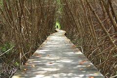 наведите деревянное Стоковые Фото