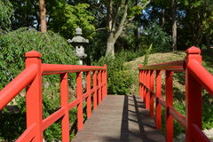 Наведите красный Лондон Англию поля деревянный сад в реальном маштабе времени природы Стоковые Фото