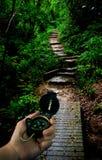 навигация джунглей компаса Стоковые Фото