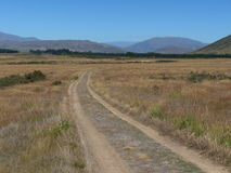 Наградите выигрывая Альпы к езде цикла океана в Новой Зеландии Стоковые Фотографии RF