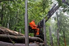 Нагружать деревянный вносит дальше дорогу в журнал 02 горы Стоковые Изображения RF