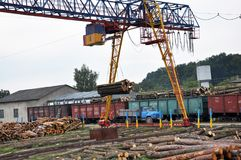 Нагружая автомобили с палубами дерева Стоковая Фотография