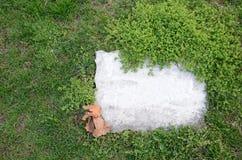надгробная плита Стоковая Фотография RF