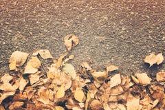 Надземный взгляд листвы осени сухой желтой над дорогой Стоковое Изображение RF