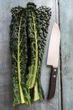 Надземный взгляд листьев Cavolo Nero с ножом на деревянной предпосылке Стоковое фото RF
