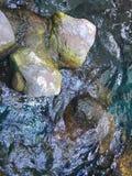Надземный взгляд мха покрыл камни в пруде Стоковые Изображения RF