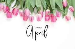 Надпись здравствуйте апрель Цветок тюльпана стоковое изображение rf