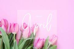 Надпись здравствуйте апрель Цветок тюльпана стоковые фотографии rf