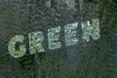 Надпись: Зеленый цвет на стекле зеркала под падениями воды стоковые изображения