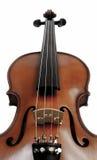 над белизной скрипки Стоковая Фотография