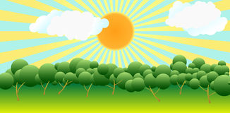 над валами солнца Стоковые Изображения RF