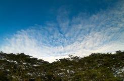 над валом верхних частей облаков Стоковое Фото