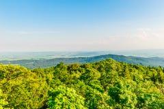 над верхними частями деревьев и пиками гор Стоковые Фотографии RF