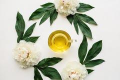 над взглядом Свежий душистый и здоровый травяной или зеленый чай в кружке Стоковые Фото