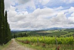 над взглядом Тосканы Стоковые Изображения