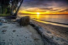 над желтым цветом захода солнца океана склонения эффективным Стоковая Фотография