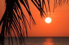 над заходом солнца моря тропическим Стоковое фото RF