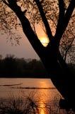 над заходом солнца реки Стоковые Изображения