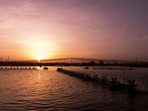 над заходом солнца шримса пруда Стоковые Фотографии RF