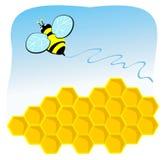 над летанием гребня пчелы Стоковое фото RF