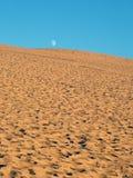 над луной дюны Стоковые Изображения RF