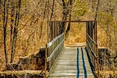 Над мостом и через древесины, в парке долины отголоска стоковые фото