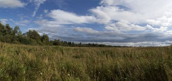 над полем облаков Стоковые Изображения RF