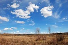 над травой облаков Стоковая Фотография