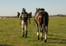 наездник лошади стоковое изображение rf