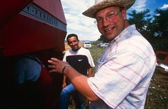 Наемные сельскохозяйственные рабочие в Косово. стоковое фото rf