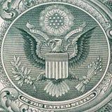 Одна деталь доллара Стоковая Фотография