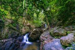 Назначения Рио Celeste перемещения предпосылки природы Рио CelesteCosta Rica назначений перемещения предпосылки природы Коста-Рик стоковые фотографии rf