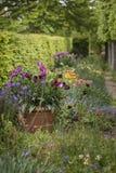 Наиболее существенные живые английские wi ландшафта сцены сада страны Стоковое Изображение