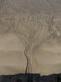 найденный кактусом вал песка karoo стоковое изображение