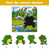 Найдите правильная тень Животное находки тенью
