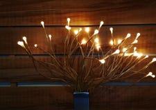 Накалять электрических лампочек Выборочный фокус на светах Освещать оформление, шарик стоковые фото