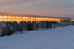 Накаляя парники против фона захода солнца в зиме стоковое изображение rf