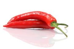 Накаленный докрасна перец chili Стоковая Фотография