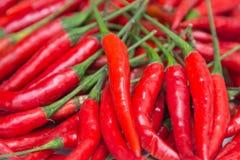 Накаленный докрасна перец chili Стоковое Фото