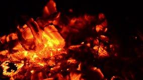 Накаляя тлеющие угли в темноте сток-видео