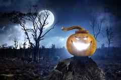 Накаляя фонарик jack Мультимедиа Стоковая Фотография
