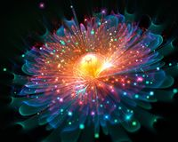 Накаляя цветок предпосылки фрактали Стоковая Фотография RF