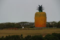 Накидка Южная Африка Bathurst восточная Стоковое фото RF