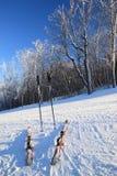 наклон лыж полюсов Стоковое Изображение RF